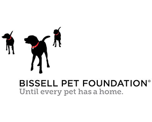Bissell pet foundation image and link